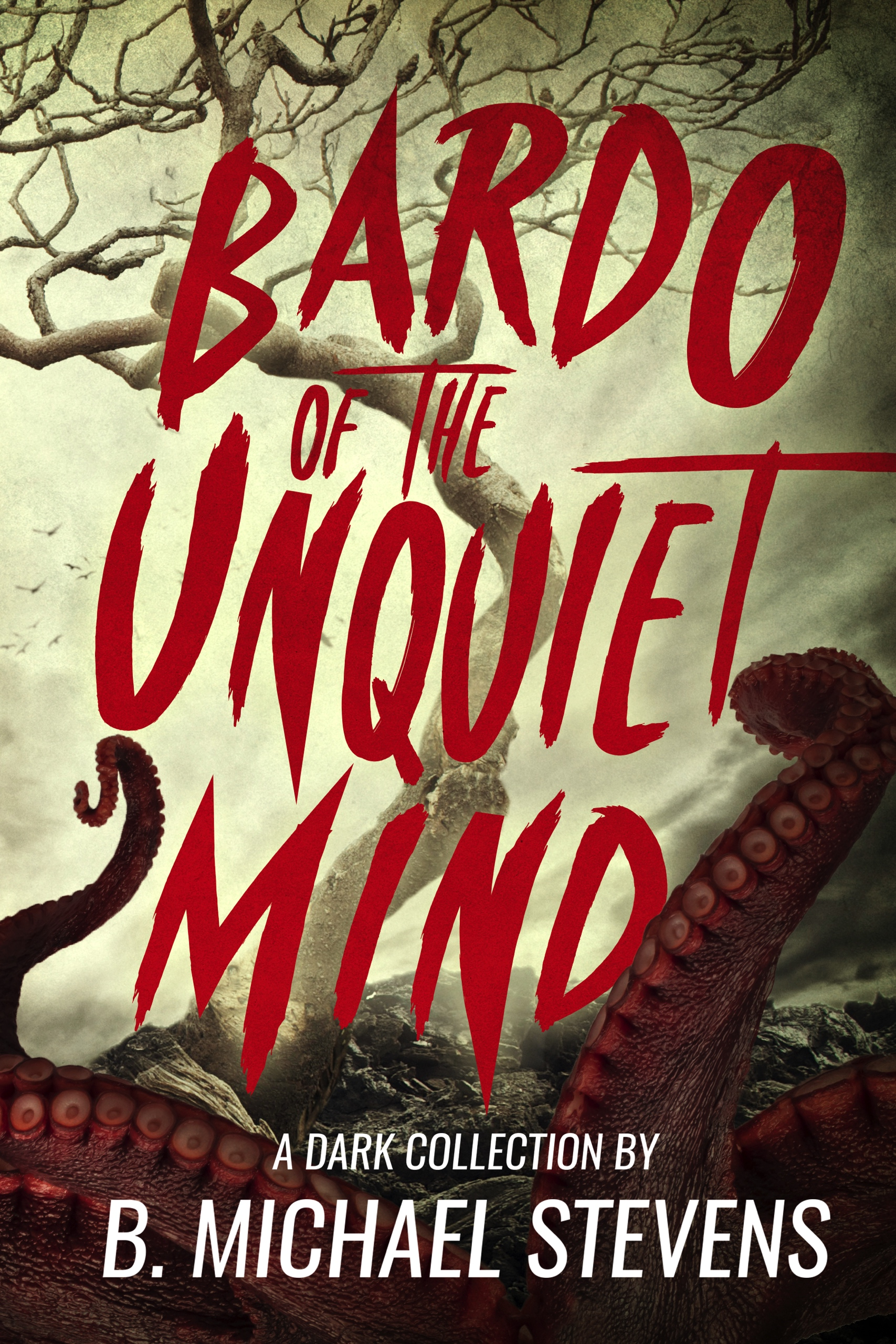 The-Bardo-of-the-Unquiet-Mind-Kindle